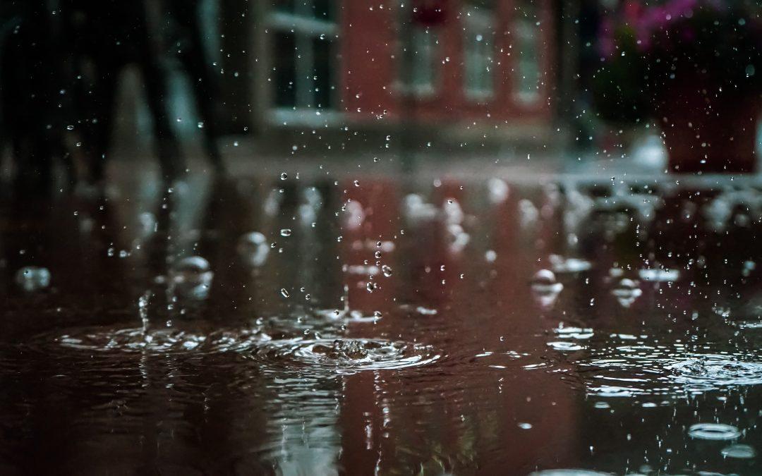 Nyt regntøj? Find det hos Havhøkeren